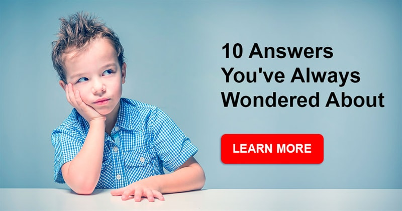 funny Story: 10 answers you've always wondered about