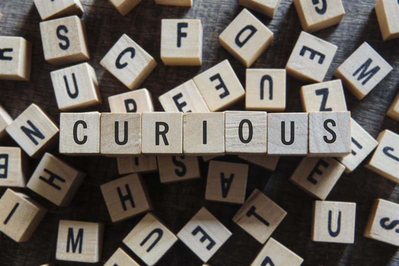 Society Story: #4 You are curious