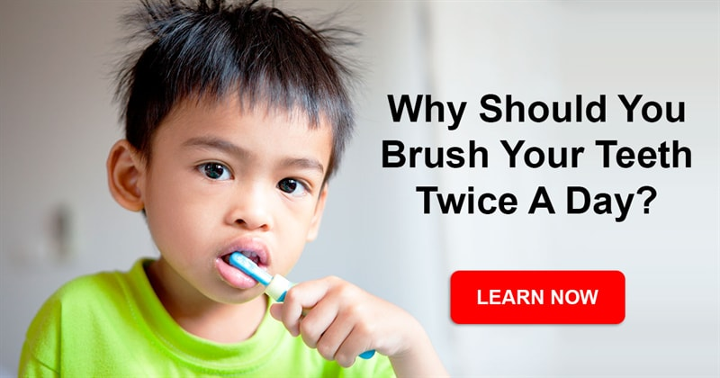 Society Story: What happens if you stop brushing your teeth altogether?