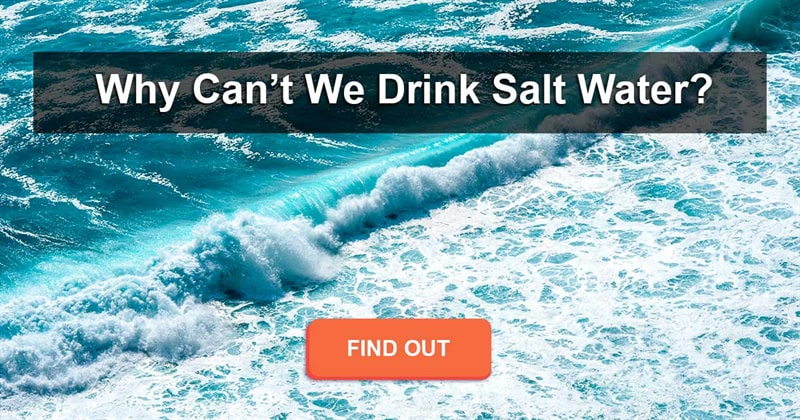 Science Story: If you're stuck in the middle of the ocean, why can't you drink the salt water?
