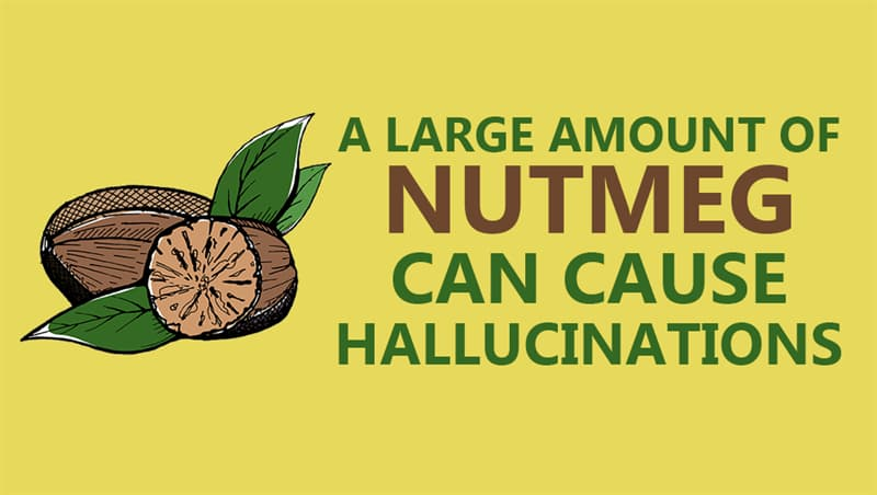 Culture Story: A large amount of nutmeg can cause hallucinations
