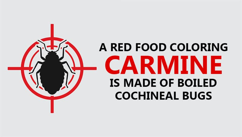 Culture Story: A red food coloring, carmine, is made of boiled cochineal bugs