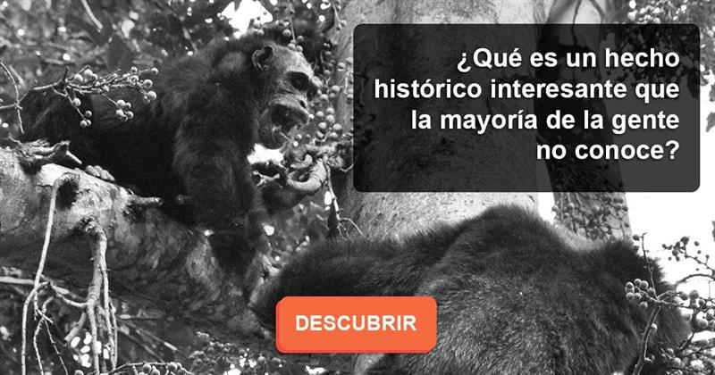 Historia Historia: ¿Qué es un hecho histórico interesante que la mayoría de la gente no conoce?