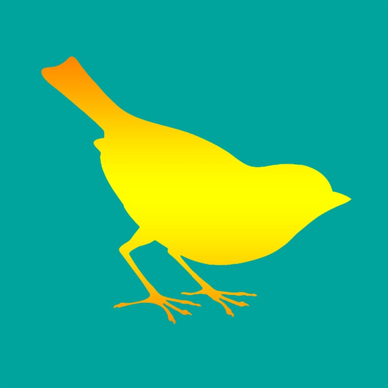 Society Story: #2 A bird - kind, sensible, insightful