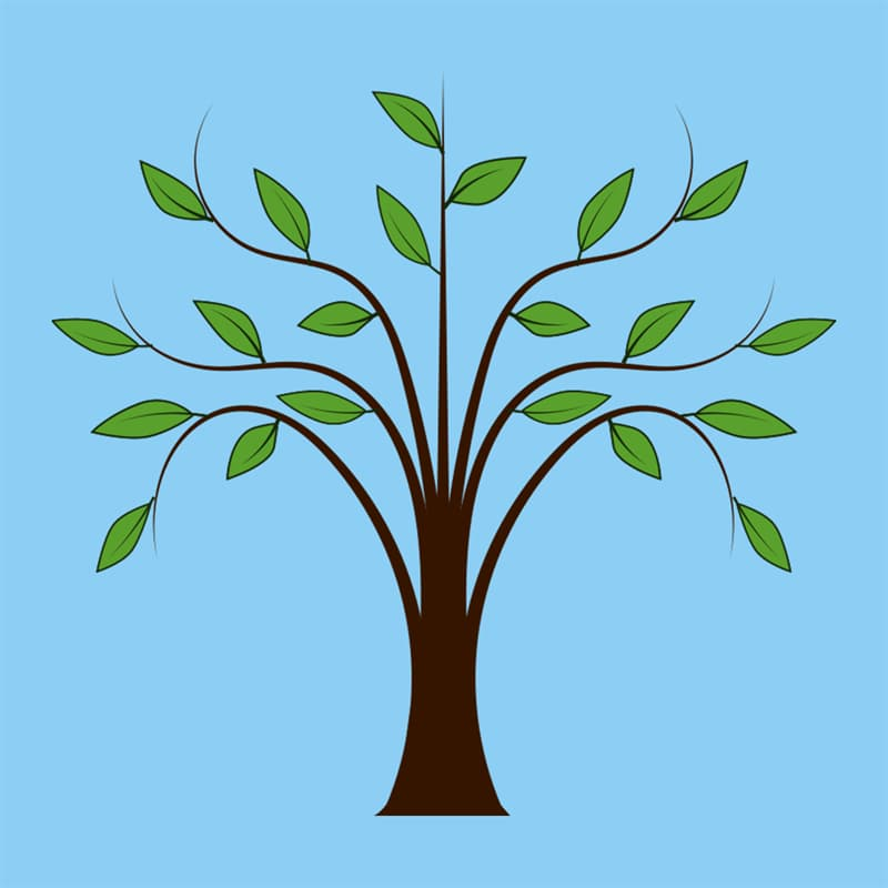 Society Story: #5 A tree - family-oriented, attentive, polite