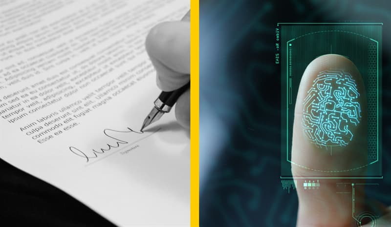 Science Story: #3 Signatures