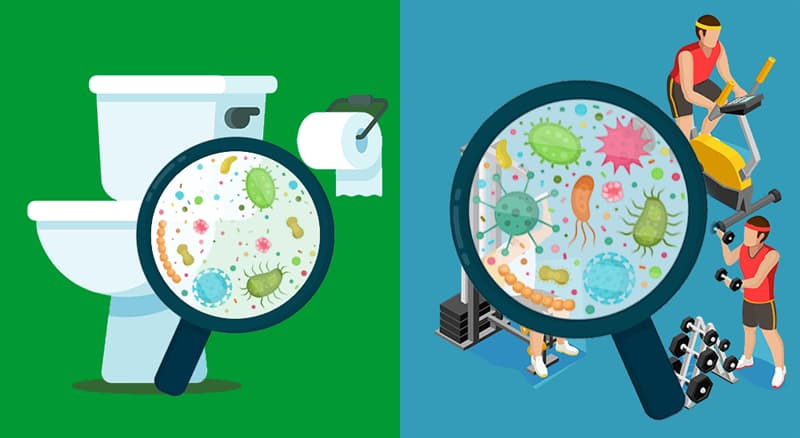 Science Story: #1 There are more germs in a gym than in a toilet room