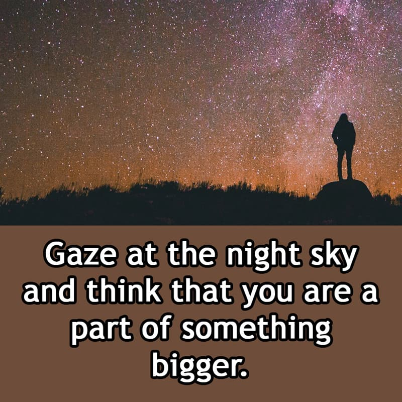 Society Story: Gaze at the night sky and think that you are a part of something bigger.