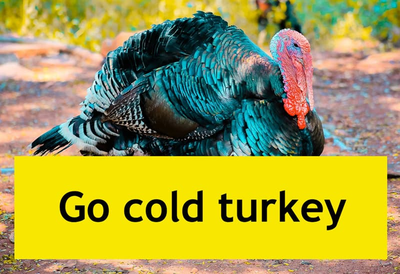 Culture Story: Go сold turkey