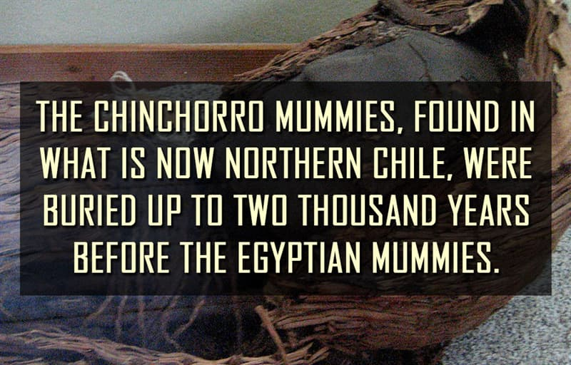 Science Story: The Chinchorro mummies, found in what is now northern Chile, were buried up to two thousand years before the Egyptian mummies.