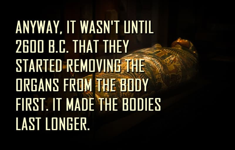 Science Story: Anyway, it wasn't until 2600 B.C. that they started removing the organs from the body first. It made the bodies last longer.