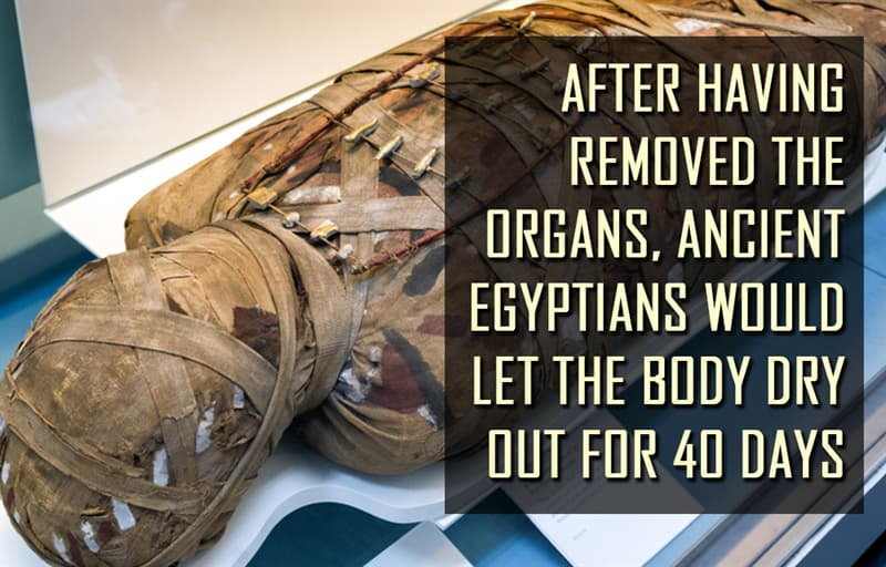 Science Story: After having removed the organs, ancient Egyptians would let the body dry out for 40 days