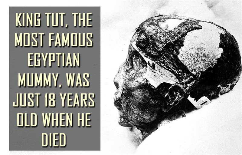 Science Story: King Tut, the most famous Egyptian mummy, was just 18 years old when he died