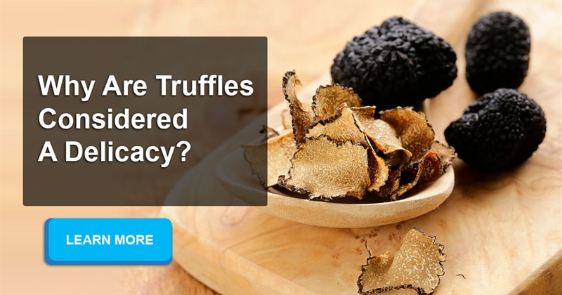 Culture Story: What exactly is a truffle and why is it so expensive?