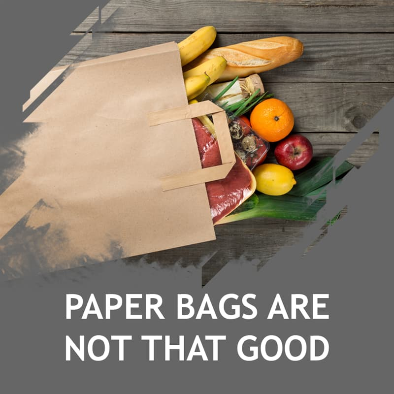 Science Story: Paper bags are not that good