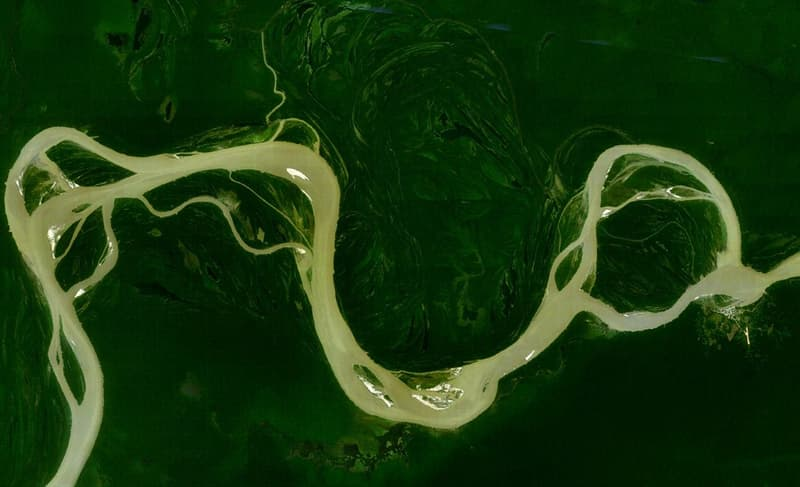 Science Story: #7 The Amazon rainforest