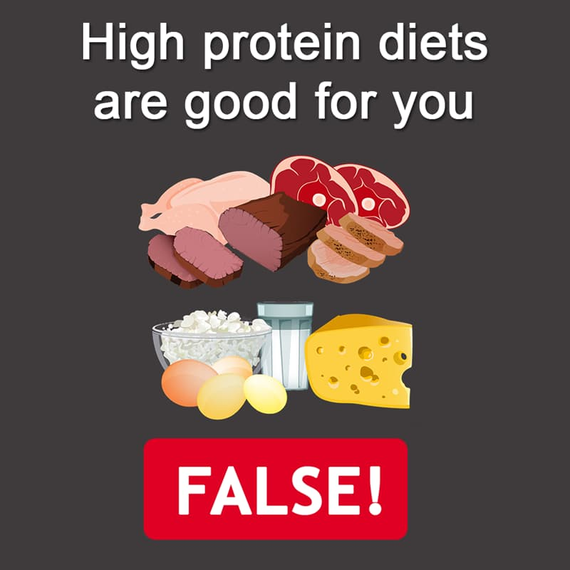 Science Story: High protein diets are healthy - FALSE!
