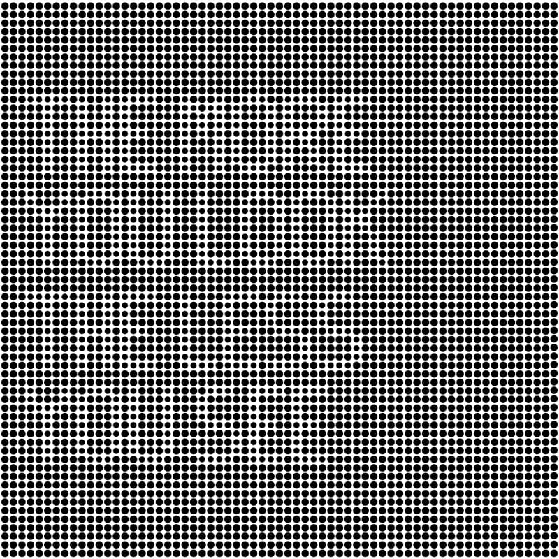 Science Story: black and white optical illusion with hidden words
