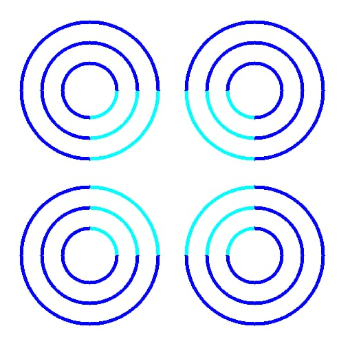 Science Story: optical illusions based on Mental Filtering