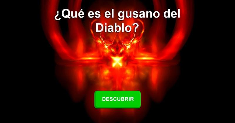 Сiencia Historia: ¿Qué es el gusano del Diablo?