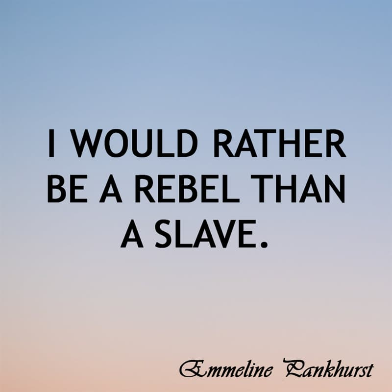 Society Story: I'd rather be a rebel than a slave.
