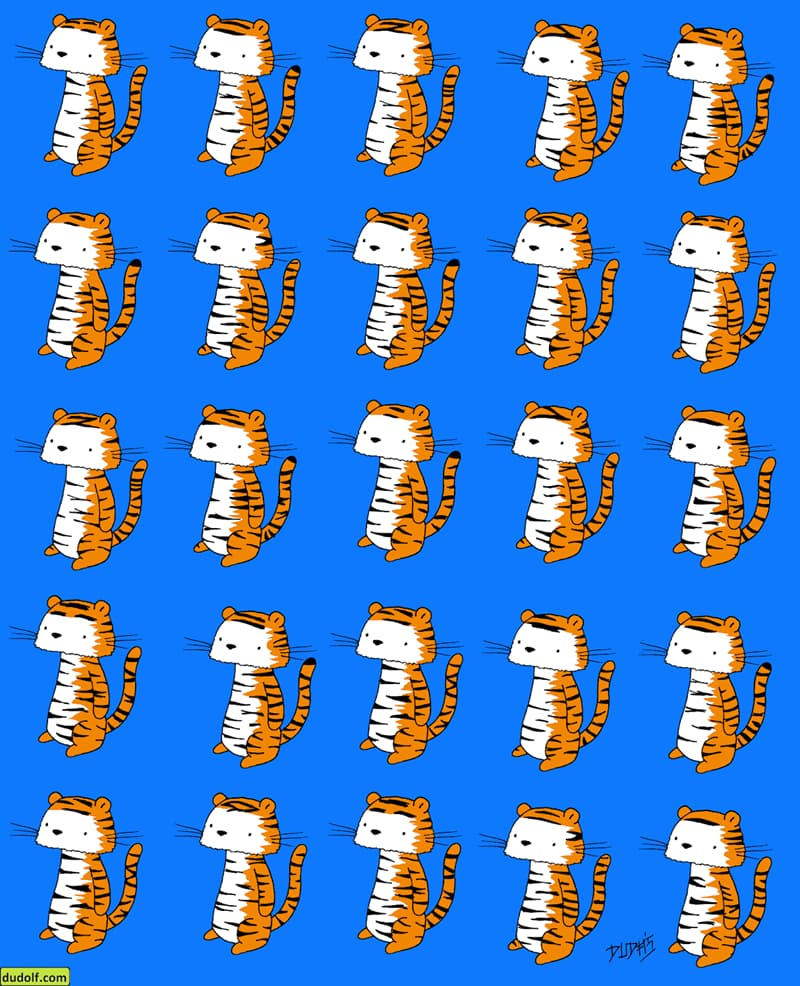 IQ Story: #2 Each tiger has a pair that looks exactly like it... except one. Which one doesn't?