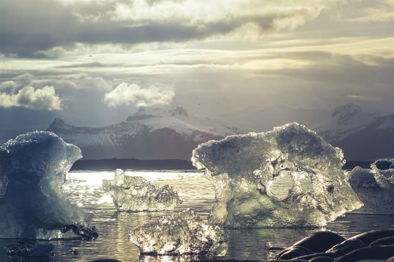 Nature Story: #6 The Arctic Ocean