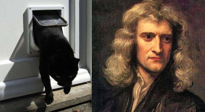 Science Story: #5 Isaac Newton's cat doors
