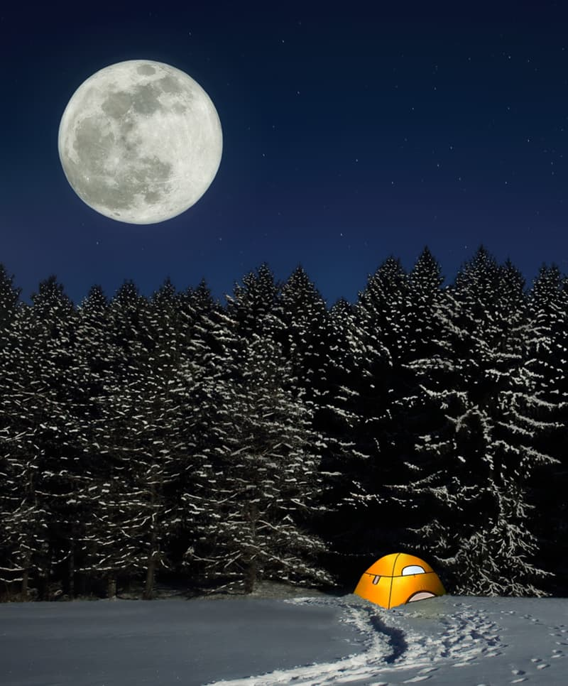 photography Story: #8 A January supermoon over snowy spruce trees at Salt Fork State Park, Ohio