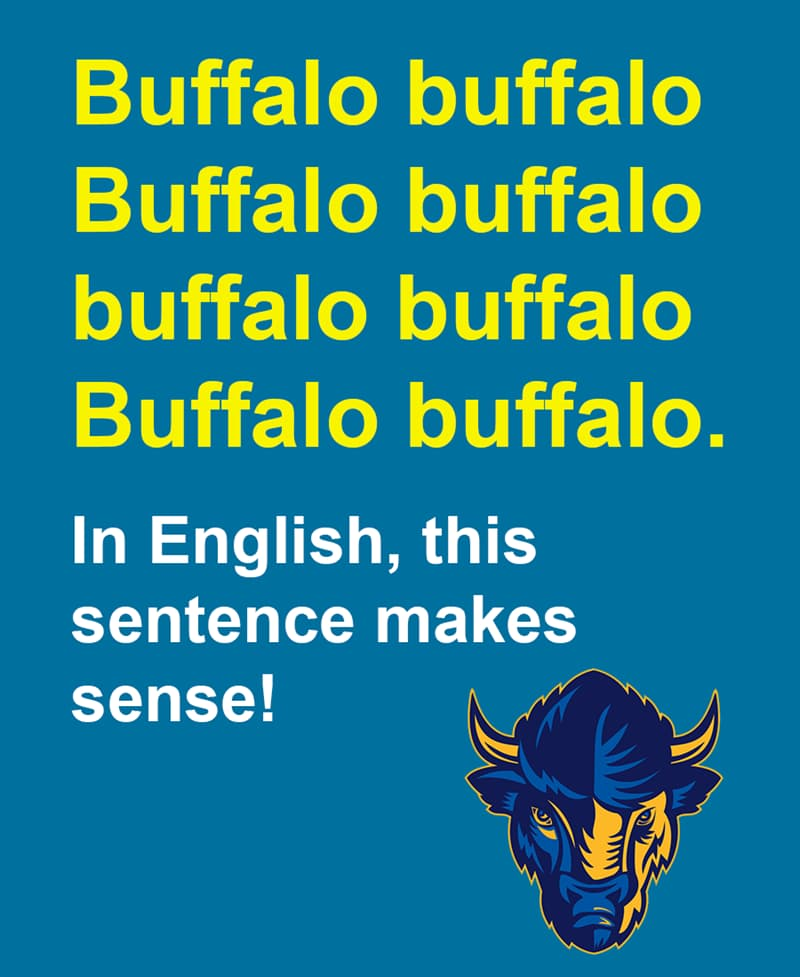 Science Story: Buffalo buffalo Buffalo buffalo buffalo buffalo Buffalo buffalo. In English, this sentence makes sense!
