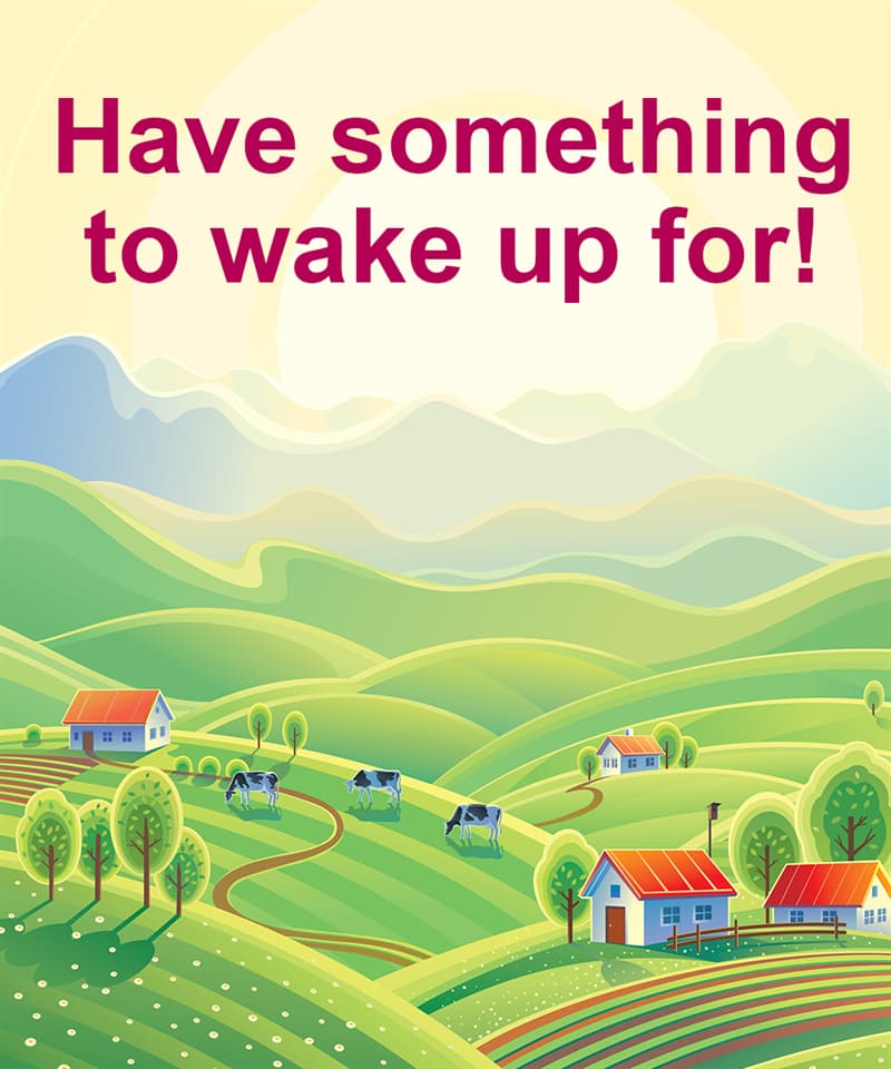 Science Story: Have something to wake up for