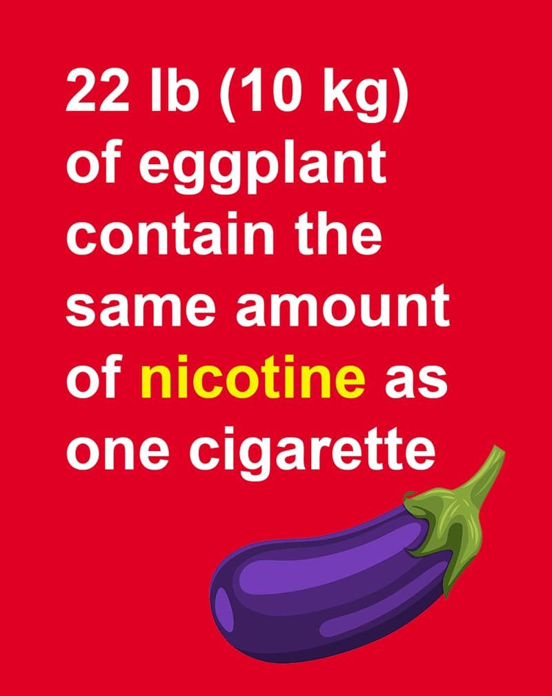 Geography Story: 22 lb (10 kg) of eggplant contain the same amount of nicotine as one cigarette