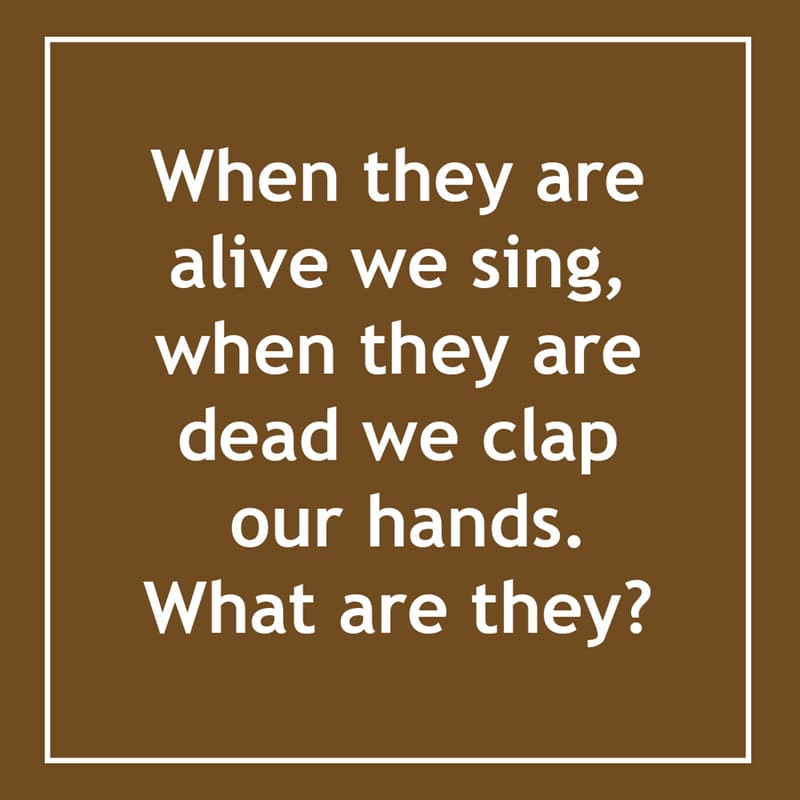 IQ Story: When they are alive we sing, when they are dead we clap  our hands. What are they? 10 short riddles most people will find confusing