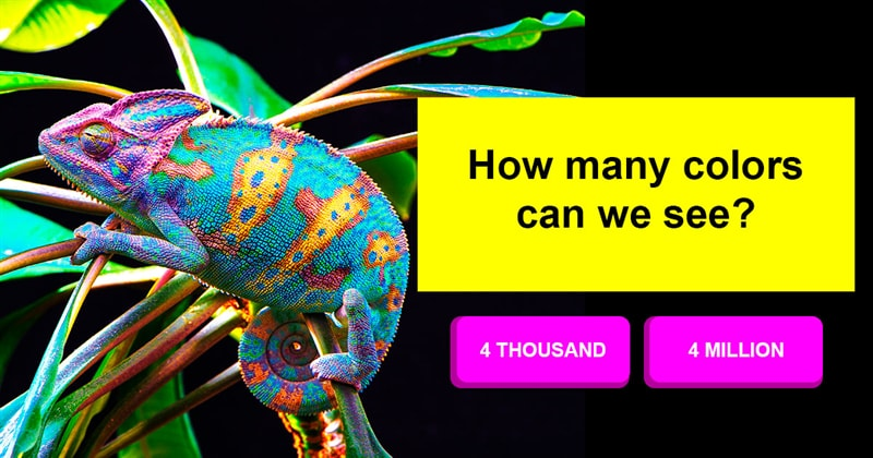 Science Story: Are there any completely new colours that humans have never seen?