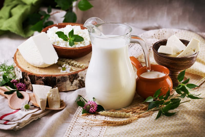 knowledge Story: #8 Dairy products are digested within 2 hours
