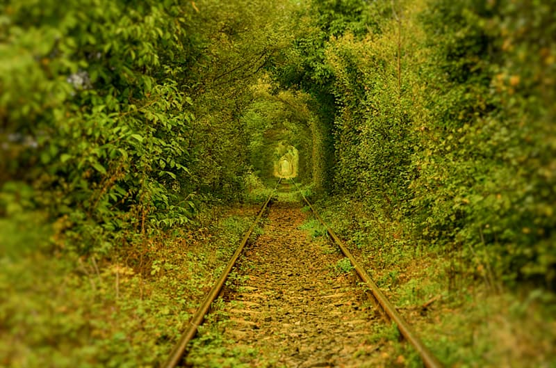 Geography Story: #11 The tunnel of love, Romania
