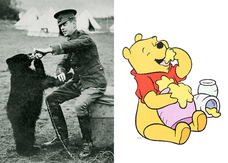 Culture Story: #5 Winnipeg The Bear  – Winnie-the-Pooh