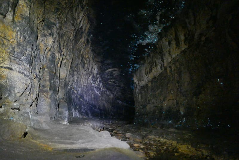 Geography Story: #8 Glowworms Cave, New Zealand
