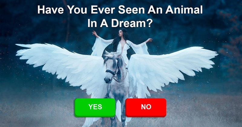 Nature Story: Meaning Of 7 Animals In Dreams