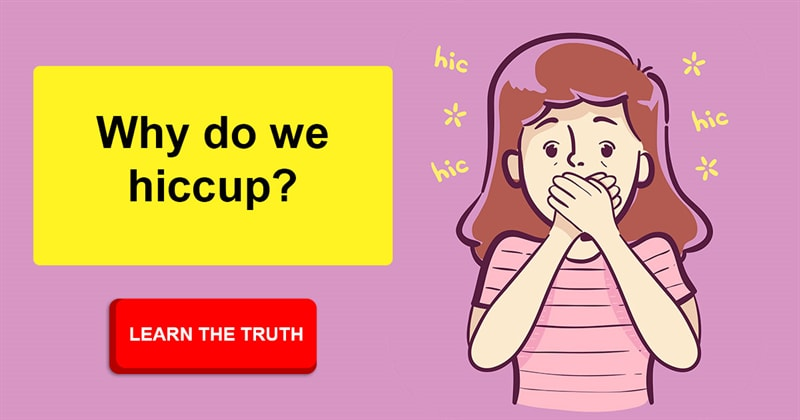 Science Story: What causes hiccups? This educational video throws light on the nature of this phenomenon.