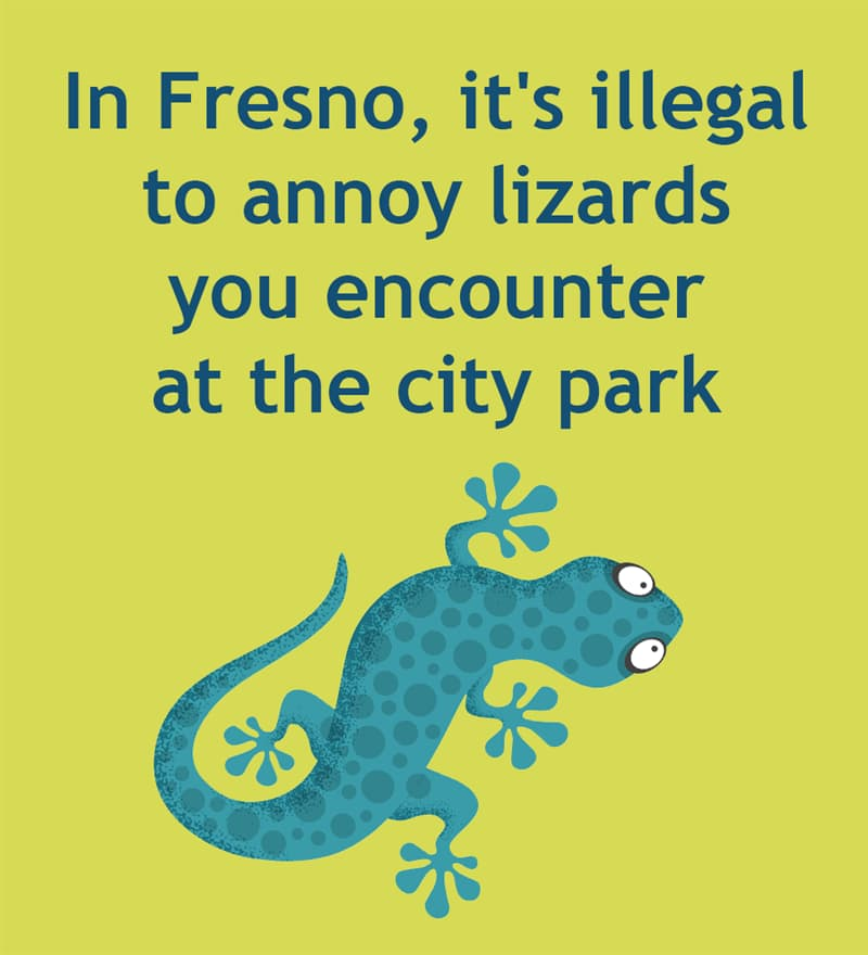 Society Story: In Fresno, California, it's illegal to annoy lizards you encounter at the city park