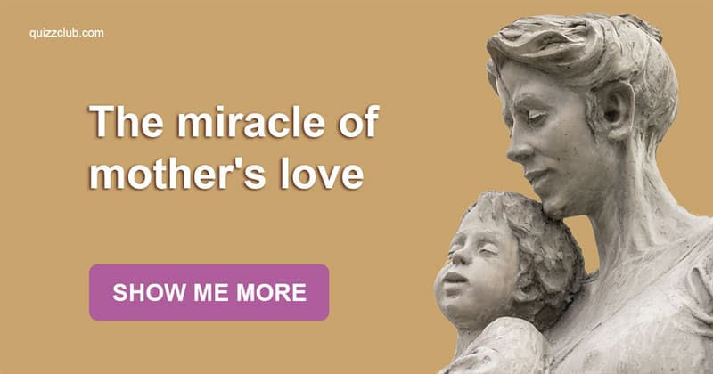 Society Story: Ultimate glory of mother's love expressed in sculptures from all over the world