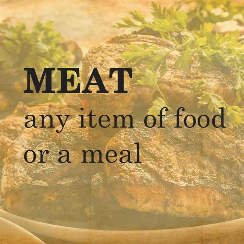 Science Story: MEAT any item of food or a meal