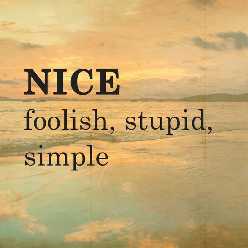 Science Story: NICE: foolish, stupid, simple