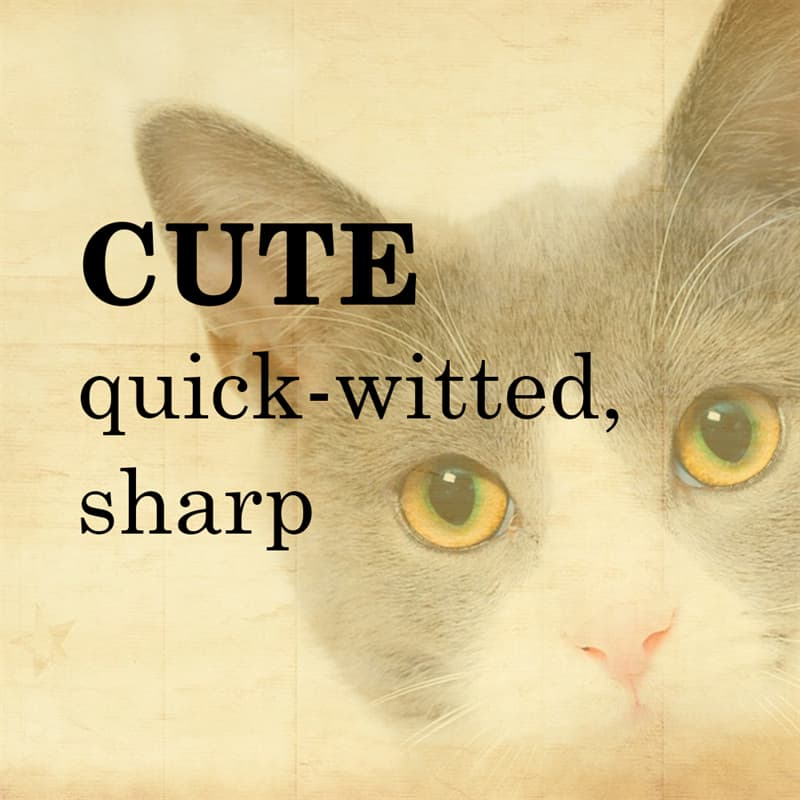 Science Story: CUTE: quick-witted, sharp