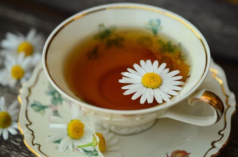 Science Story: #2 Chamomile Tea