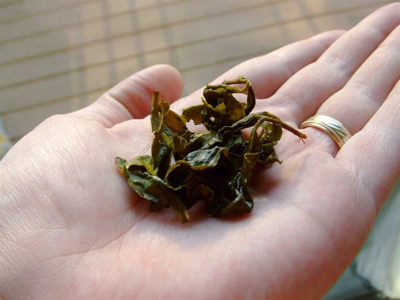 Science Story: #3 Oolong tea