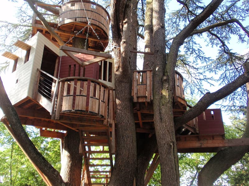 Society Story: #8  Tree house in the park, France