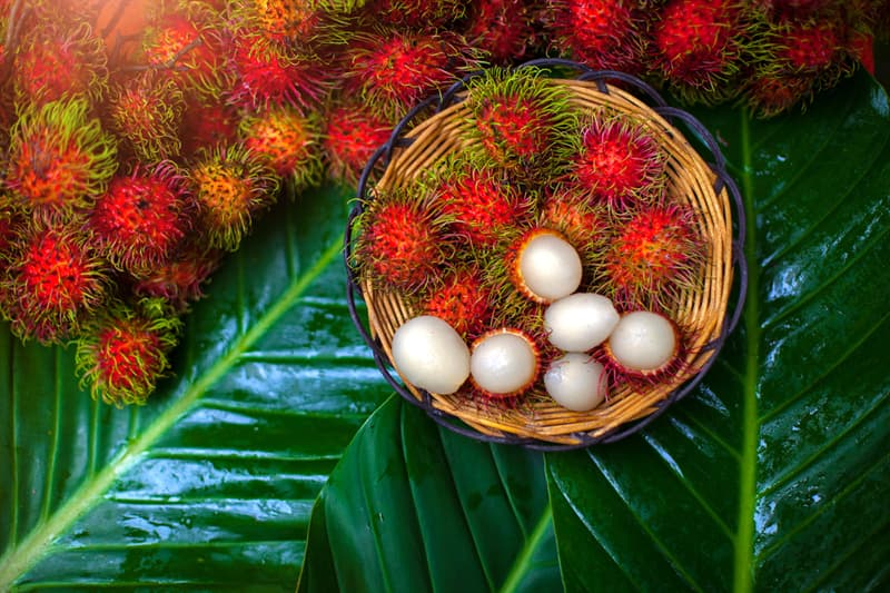 Nature Story: #6 Rambutan grows in South East Asia and tastes like grape.