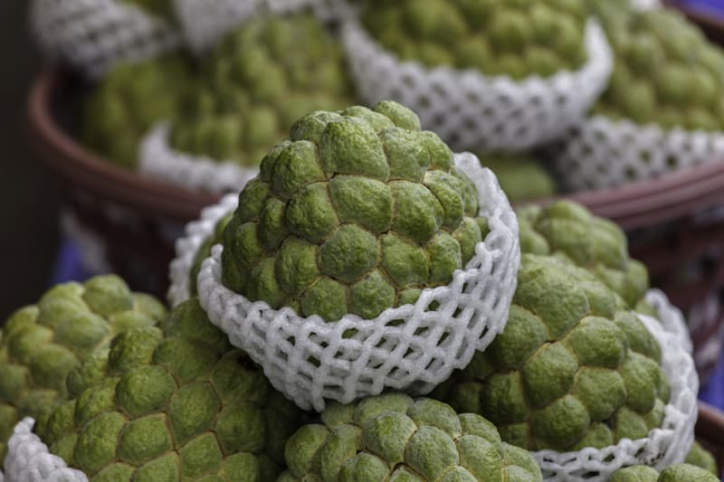 Nature Story: #8 Cherimoya grows in South America. It contains a lot of vitamins, minerals and balances blood pressure.